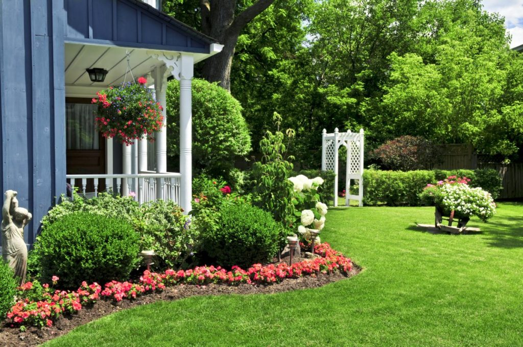 Making Landscaping Decisions as You Create the Perfect Yard